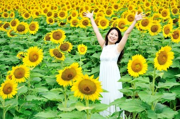 ひまわり畑と白いワンピースを着たアジア人の女性