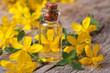 remedy St. John's wort flower in a glass bottle