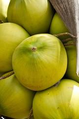 Coconut Fruit Close Up