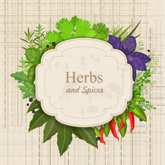 Vintage card with herbs and spices on canva..