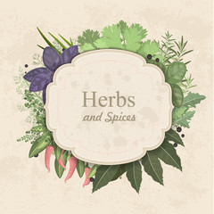 Vintage card with herbs and spices on paper