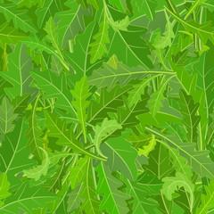 seamless texture of leaf arugula