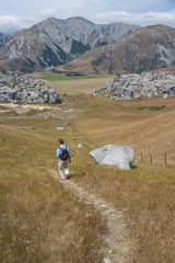 hiker on path in Castle Hill, New Zealand