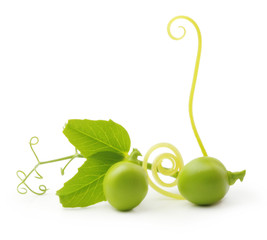 Green peas isolated
