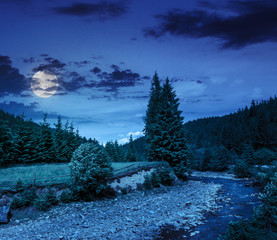 wild mountain river near forest at night
