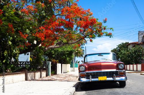 Kuba amerikanischer Oldtimer in Havanna - 68271667