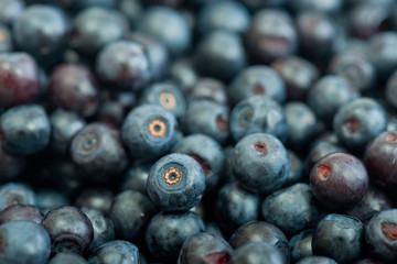 Blueberries as background