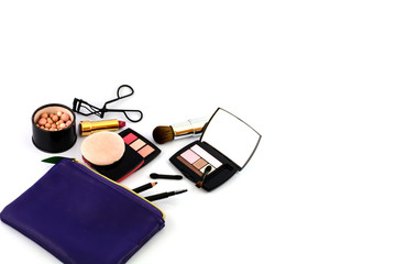 Cosmetic and Make up bag