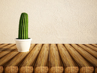 green cactus in a vase