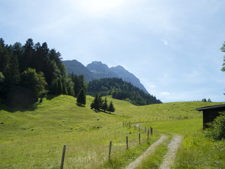 weg in den bergen