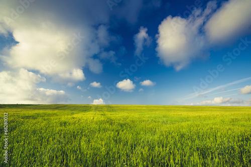 Beautiful green landscape - 68280032