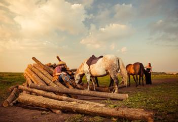 farm lumbers and horses