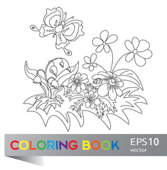 Coloring book flower summer meadow