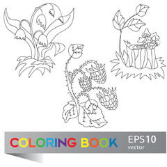 Coloring book with forest plants