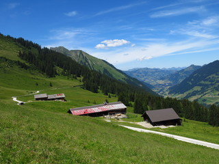 Farm houses and distant view of Gstaad