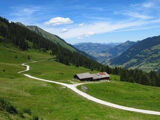 Farm and distant view of Gstaad