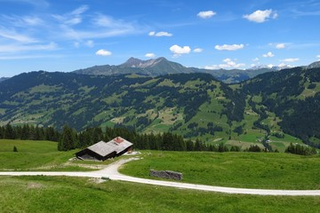 Scenery near Gstaad, Bernese Oberland