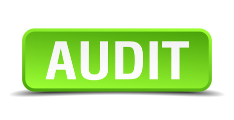 Audit green 3d realistic square isolated button