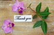 Thank you card with pink orchids and green leaves on wood