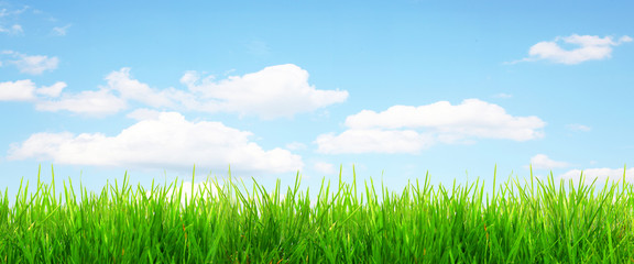 Panorama Gras