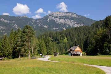 Wandern in den Alpen - Ennstal