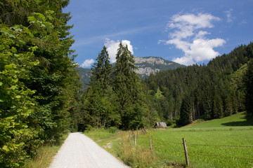 Wanderweg in den Alpen - Schladming