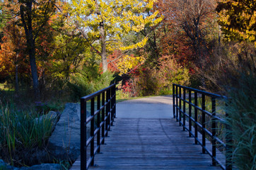 Footbridge on the Autumn Trail