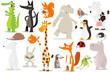 collection d'animaux pour enfants - 68291897