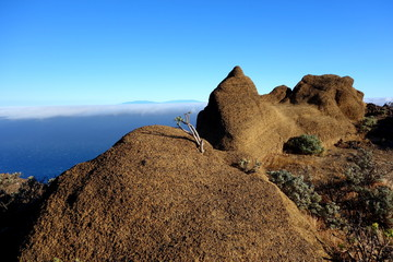 La Palma from Arure
