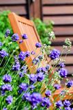 Fototapety Garden Chair on Balcony