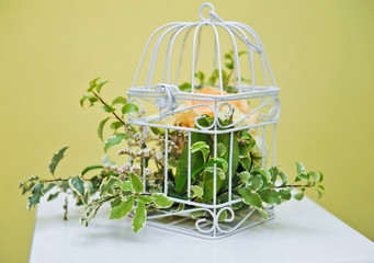 Decoration of bright orange and green colorful flower in cage