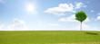 Panorama mit Baum am Horizont