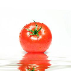Perfekt ins Szene gesetzte Tomate