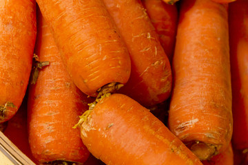 Closeup Farmers Market Carrots