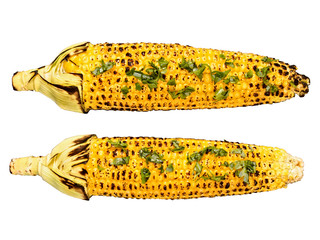 roasted corncob isolated