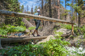Hiker crossing a footbridge on the trail