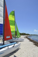 Small Sailing Catamarans