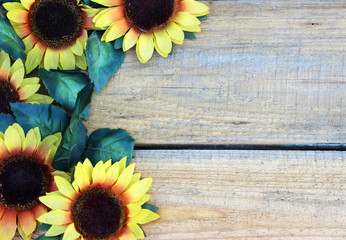 Flowers on Wooden boards background