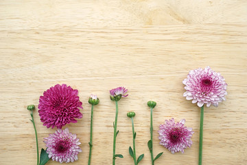 Purple gerbera flowers on wooden table