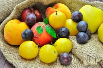 Frutta mista. Pesche, prugne, mele.