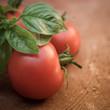 Tomaten mit zarten Basilikumblättern
