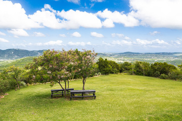 Two Picnic Tables Under Small Tees on Hill