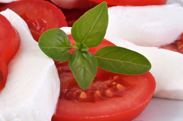 Basilic, tomate et mozzarella