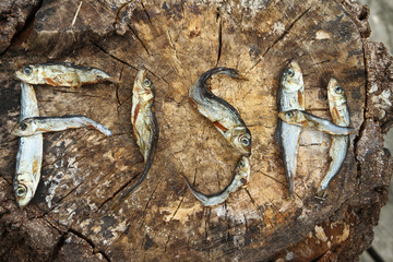 Small dried fishes forming the word fish