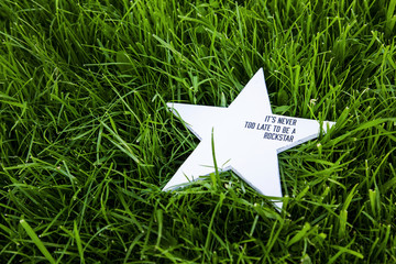 rustic star. decoration  on grass with inspirational quote