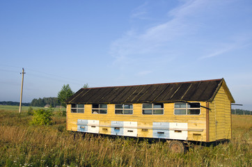apiary hives  truck trailer in  field