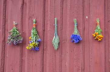 fresh summer healthy  medical flowers bunch on wall