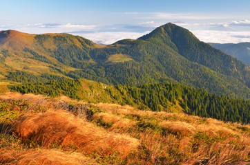 Mountain landscape in early autumn