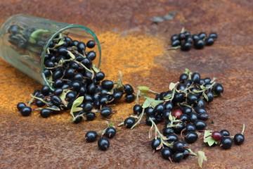 Черная смородина, ягоды