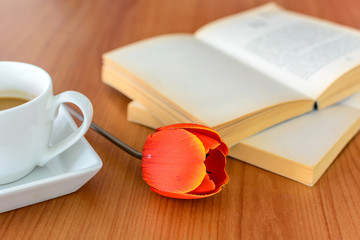 Close up red tulip with book and coffee